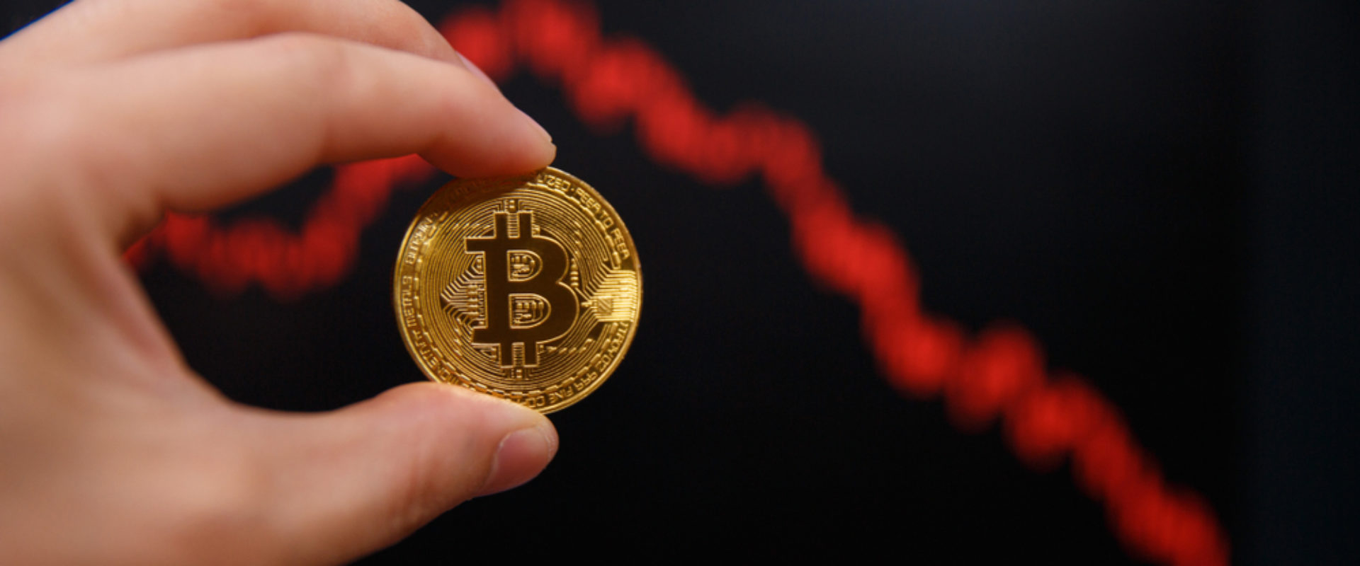 Prominent Analyst Warns That Not All Altcoins Will Surge During Next Bitcoin Bull Run