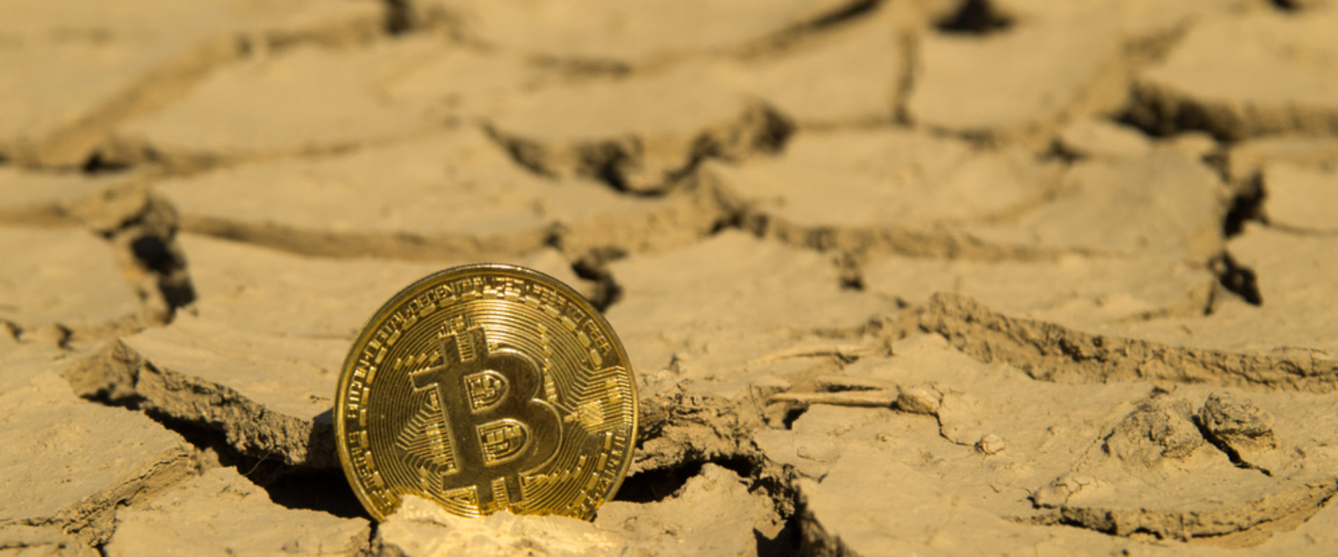 Analyst Who Predicted Bitcoin Bottom Says It Won't Find New Lows